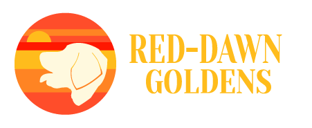 Red-Dawn Golden Retrievers